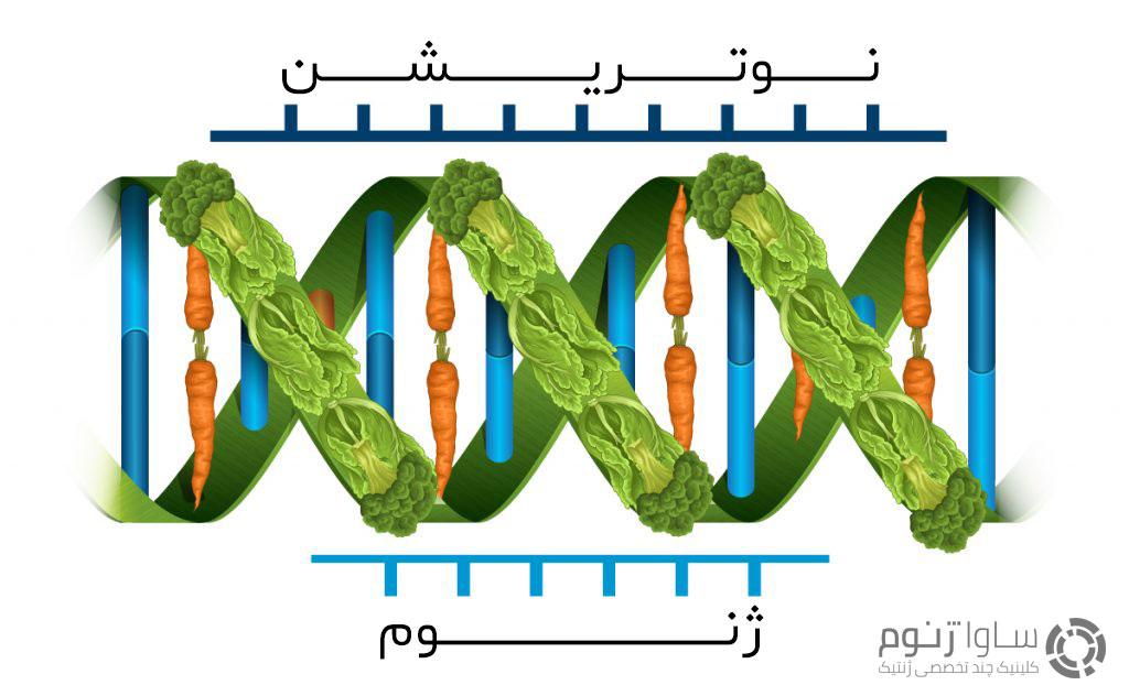 ژنوم + نونریشن